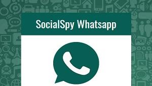 Whatsapp Spy Software South Africa